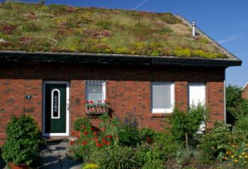 Ein Backsteinhaus mit begrüntem Dach
