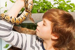 Junge mit Schlange