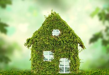 Ein kleines Miniaturhaus bewachsen mit Pflanzen